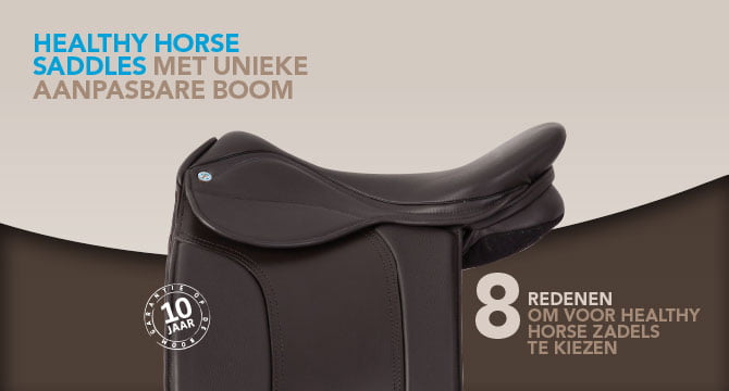 Healthy Horse Saddle
